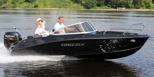 Grizzly 500 DC